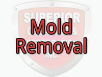Mold Removal in San Diego, Temecula, Ontario, Palm Springs, CA